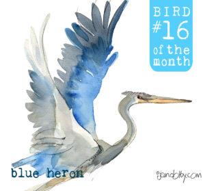 number-bird-16