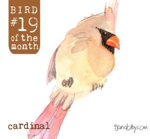 number-bird-19