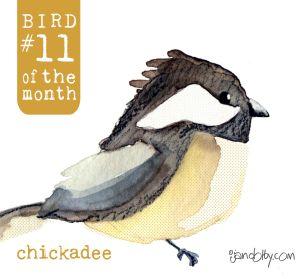 number-bird-11.jpg