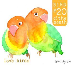 number-bird-20.jpg