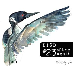number-bird-23.jpg