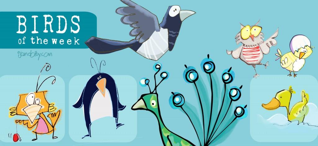 week1-of-birds
